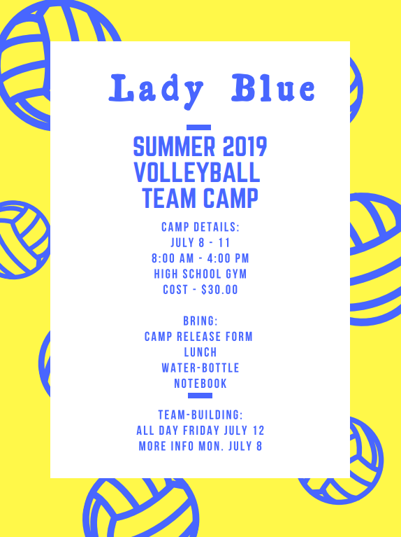 Lady Blue Summer 2019 Volleyball Team Camp Flyer